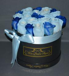 LUSSO PIATTO ROUND BLUE