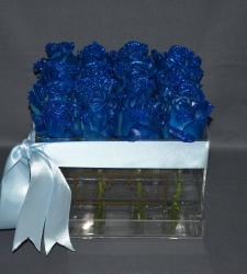 LUSSO PIATTO FRESCO ROYAL BLUE