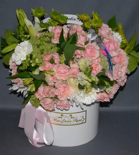 pink soffiatto
